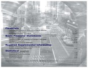 Comprehensive Annual Financial Report (CAFR) - 2002